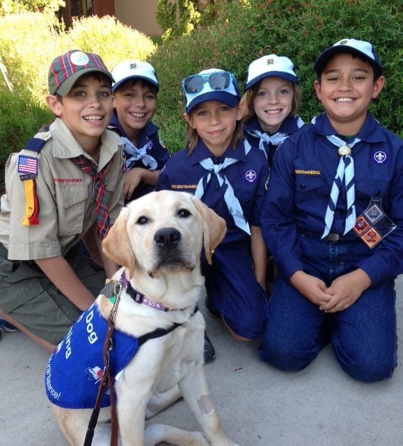 Billy Pup With Scouts