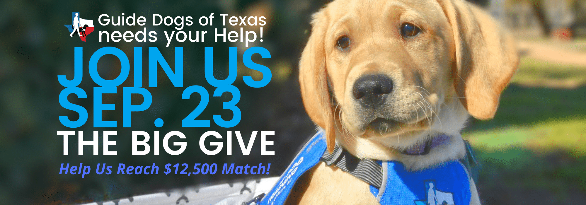 GDTX Needs Your Help! Join Us Sep. 23. The Big Give Help us reach a $12,500 match!