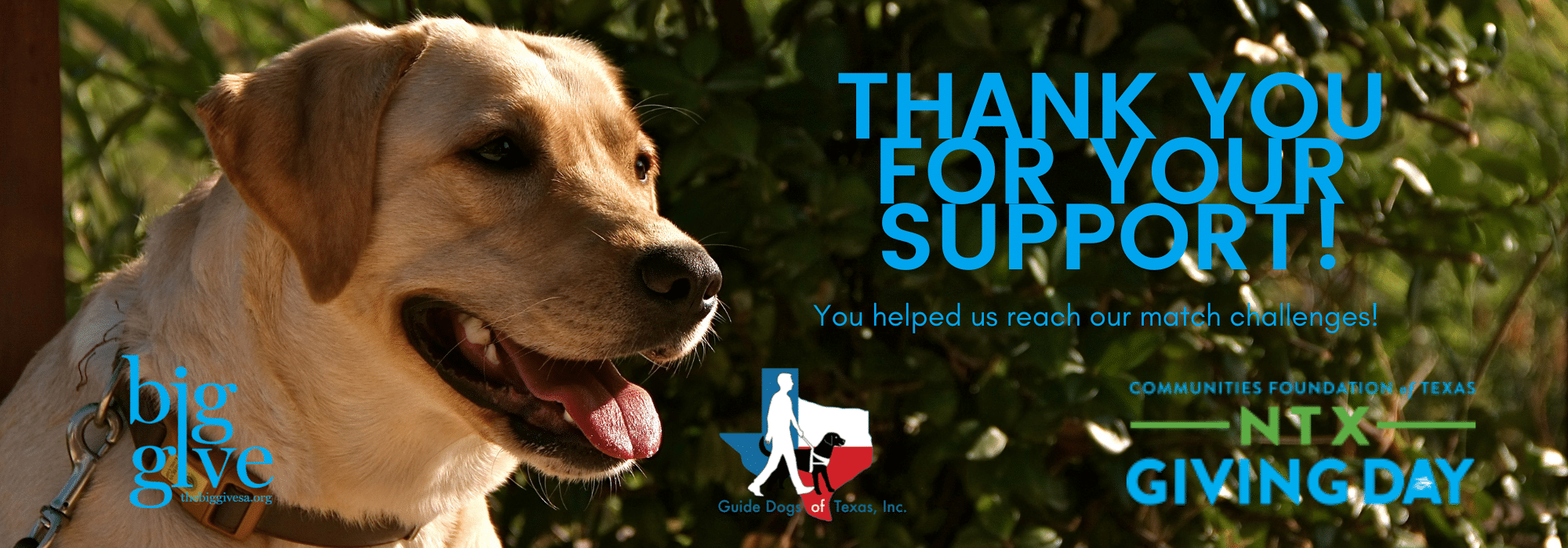 Thank you for your support! You helped us reach our match goal!